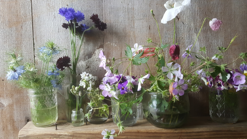 Wild Flowers - Scent Memory and Mindset Jill Griffin Coaching